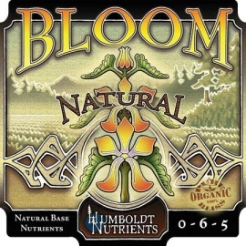 Bloom Natural